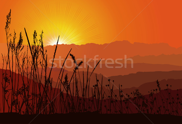 Beautiful sunset over mountains with grass silhouette / vector Stock photo © Taiga