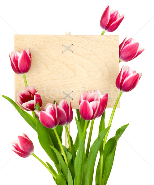 Beautiful Tulips and Empty Sign for message / wooden panel / iso Stock photo © Taiga