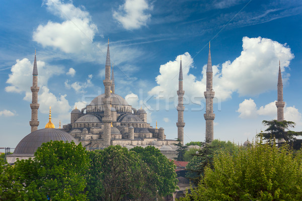 Sultanahmet Blue Mosque in Istanbul, Turkey, Stock photo © Taiga