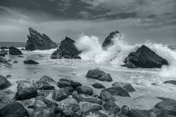 Ocean beach - Big waves breaking - Black and White artistic Stock photo © Taiga