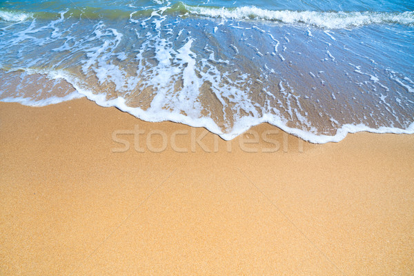 Sea Beach with  blue surf of wave and yellow sand  Stock photo © Taiga