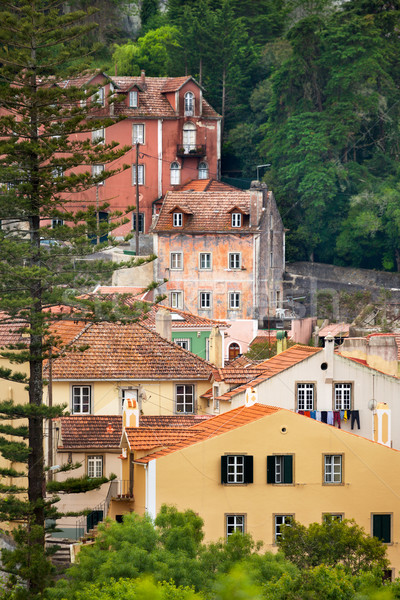 View of Sintra / Old european town / Portugal  Stock photo © Taiga