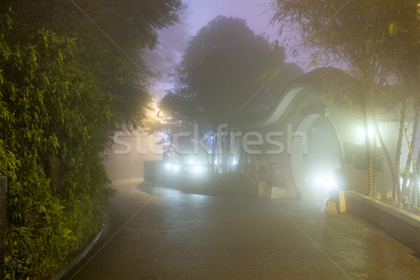 Mystery Fog in the asian park, Hong Kong Stock photo © Taiga
