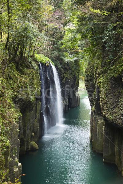 Mooie waterval natuur schoonheid berg groene Stockfoto © Taiga