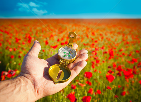 Compass in a Hand / Discovery / Beautiful Day / Red Poppies in N Stock photo © Taiga