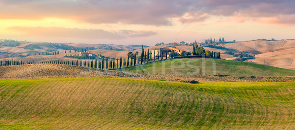 Panoramic view of  Tuscany countryside landscape Stock photo © Taiga