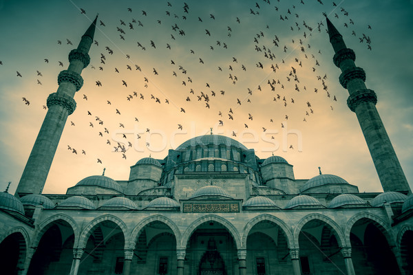 Blue Mosque against dramatic sky with birds Stock photo © Taiga