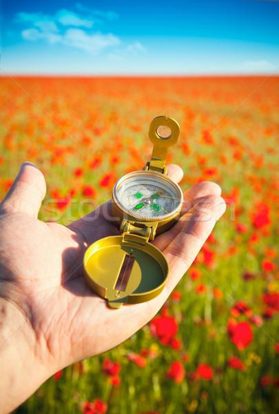 Boussole main découverte belle jour rouge Photo stock © Taiga