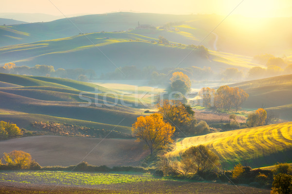 Morning Autumn landscape -  fall season and sunshine Stock photo © Taiga