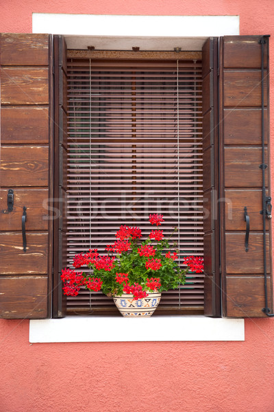 Old European Window / with flowers and wooden shutters Stock photo © Taiga