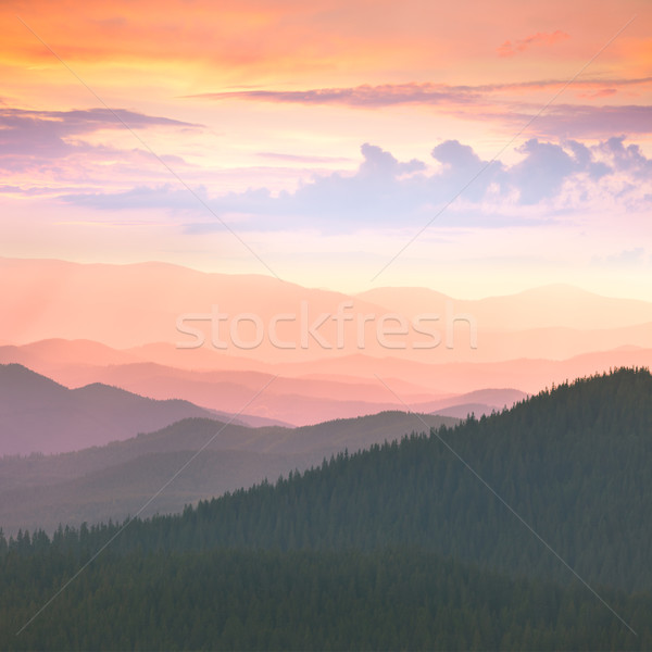 Colorful Sunset in the  Carpathians Mountains Stock photo © Taiga