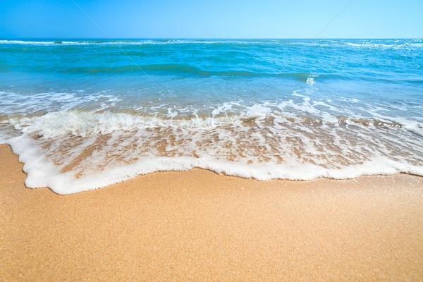 Summer Landscape - Relax on the  Beach Stock photo © Taiga