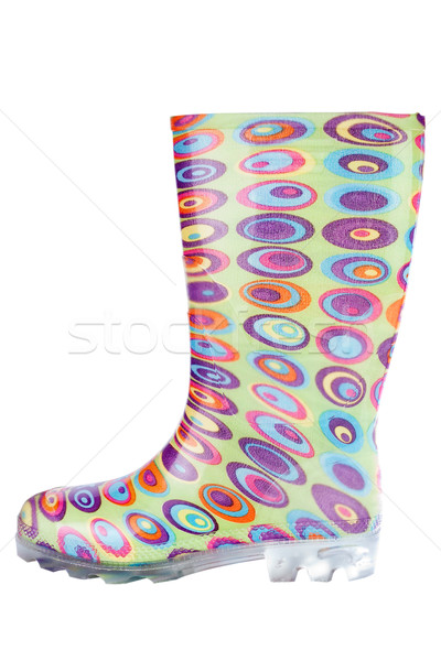 Women's  rubber boot Stock photo © Taigi