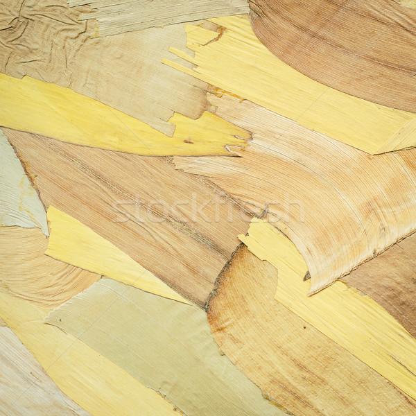 Aszalt ugatás háttér száraz növény fa Stock fotó © Taigi
