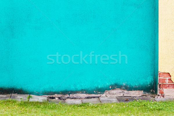 Vibráló ciánkék tapasz fal zöld fű fű Stock fotó © Taigi