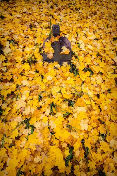 крест кладбище осень листьев трава лист Сток-фото © Taigi