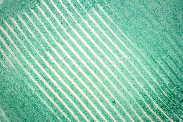 Tiro cerâmica textura verde parede Foto stock © Taigi
