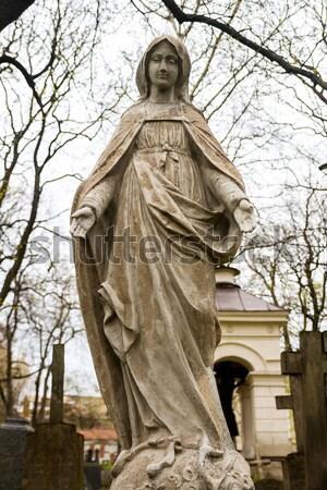 Standbeeld maagd begraafplaats voorjaar hart kruis Stockfoto © Taigi