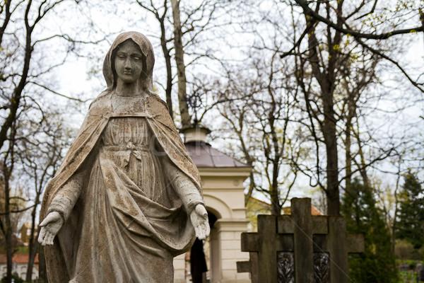 статуя девственница кладбище Вильнюс Литва весны Сток-фото © Taigi
