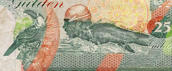 Part of Suriname banknote Stock photo © Taigi