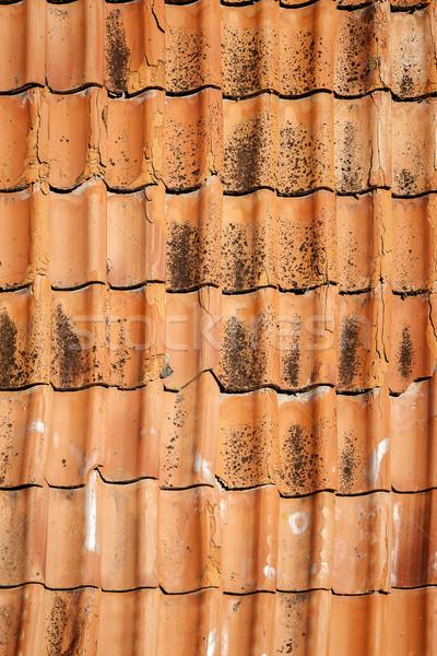 Old roof tiles   Stock photo © Taigi