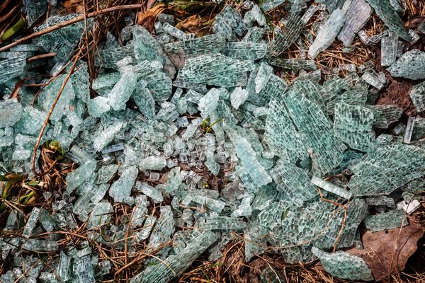 Törött üveg föld közelkép absztrakt természet ablak Stock fotó © Taigi