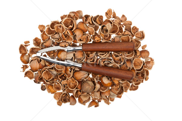 Nutcracker on empty nutshells Stock photo © Taigi
