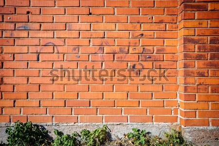 Old wall with immured windows Stock photo © Taigi