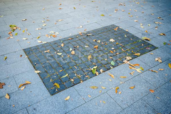 Marciapiede texture pietra blocchi rettangolo piastrellato Foto d'archivio © Taigi