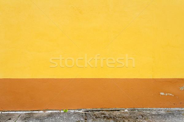 Wibrujący żółty brązowy gipsu ściany streszczenie Zdjęcia stock © Taigi