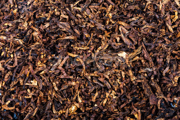 Tobacco texture background Stock photo © Taigi