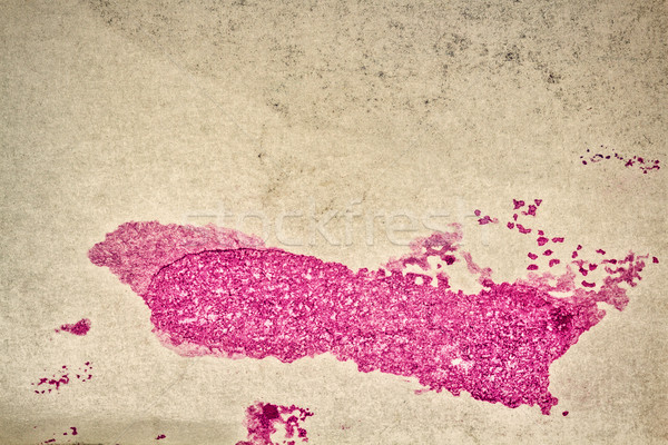 Abstract magenta watercolor background Stock photo © Taigi