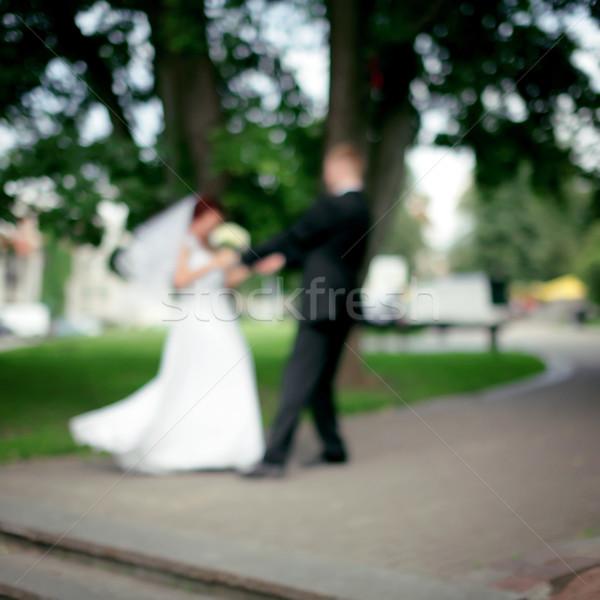 Esküvő tánc elmosódott absztrakt nő fű Stock fotó © Taigi