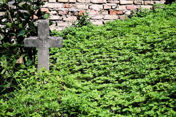 古い 捨てられた 墓 草 自然 イエス ストックフォト © Taigi