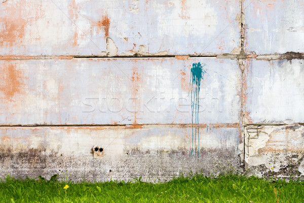 Beton muur groen gras gras verf Blauw Stockfoto © Taigi