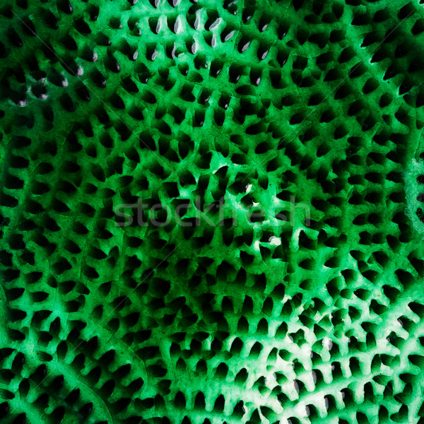 Closeup shot of glazed ceramics texture Stock photo © Taigi