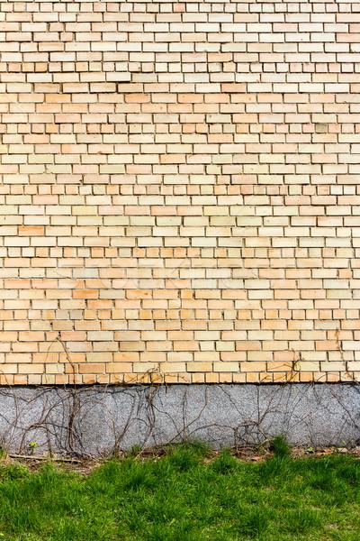żółty murem zielona trawa domu budynku budowy Zdjęcia stock © Taigi
