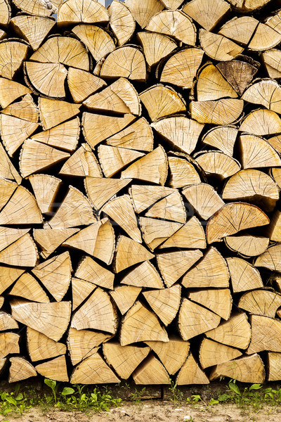Firewood placed on the ground Stock photo © Taigi