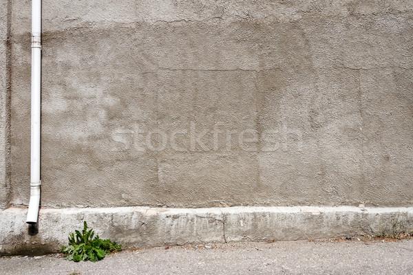 Starych szary gipsu ściany wyblakły ziemi Zdjęcia stock © Taigi