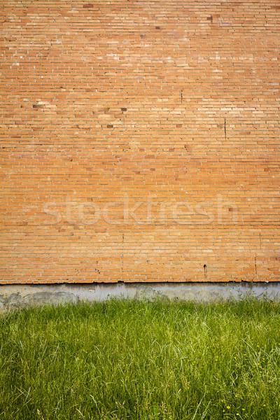 красный кирпичная стена зеленая трава дома текстуры здании Сток-фото © Taigi