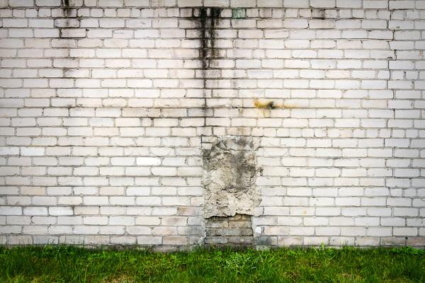 белый кирпичная стена зеленая трава трава стены синий Сток-фото © Taigi