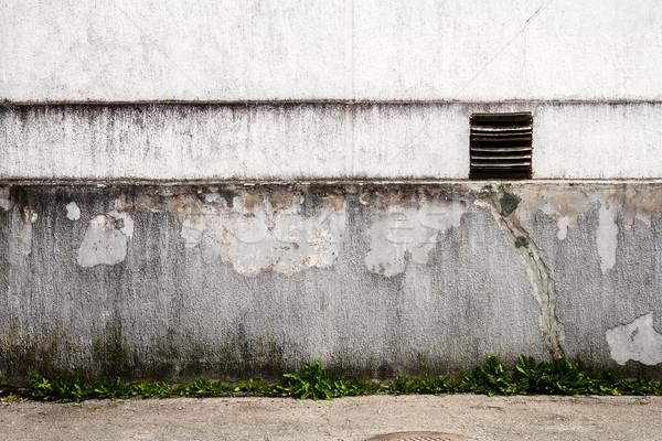 白 石膏 壁 緑の草 草 ウィンドウ ストックフォト © Taigi