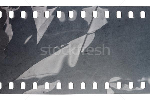 Vecchio grunge filmstrip rumoroso grigio isolato Foto d'archivio © Taigi