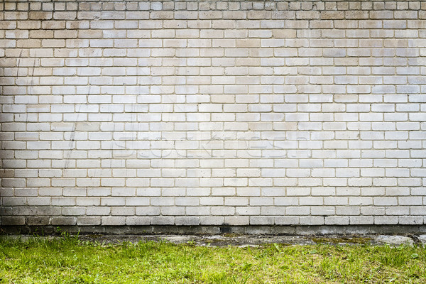 Big fragment of white brick wall with green grass Stock photo © Taigi