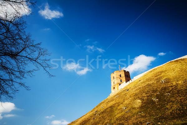 Torony Vilnius fa épület város ablak Stock fotó © Taigi