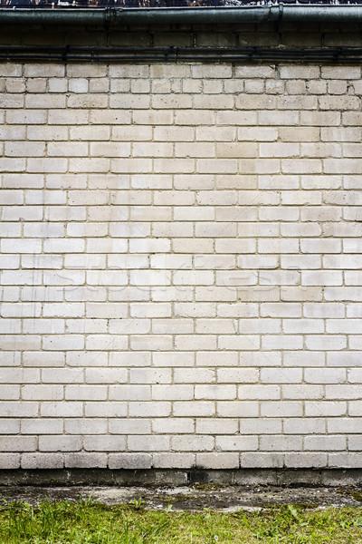 Groot fragment witte muur groen gras streep Stockfoto © Taigi