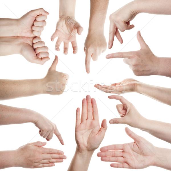 Vrouwelijke handen geïsoleerd witte vrouw hand Stockfoto © Taigi