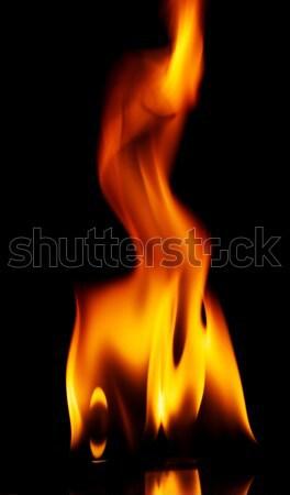 Tűz lángok izolált fekete absztrakt háttér Stock fotó © Taigi