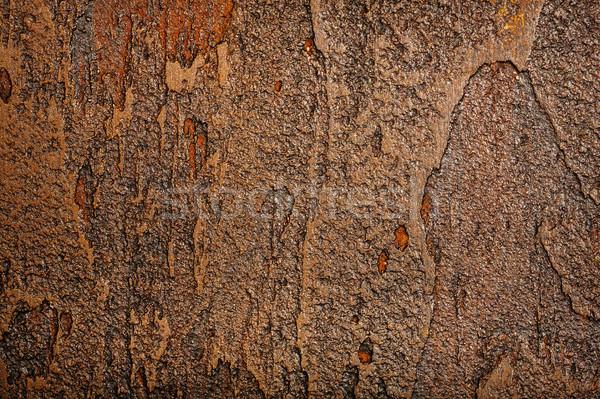 Barna fal textúra stukkó festék háttér Stock fotó © Taigi