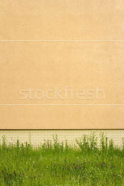 Modern citromsárga tapasz fal zöld fű textúra Stock fotó © Taigi